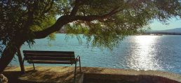 bench daylight lake reduce stress and anxiety